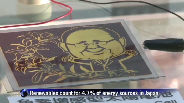 """Screenshot from the AFP video report on Japan's """"hydrangea solar cell"""" [fair use]"""