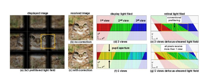 "Cropped screenshot from the UC Berkeley paper ""Supplementary Material: Eyeglasses-free Display: Towards Correcting Visual Aberrations with Computational Light Field Displays"""