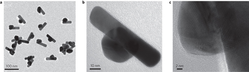 Image credit: (c) 2015 Nature Nanotechnology (2015) doi:10.1038/nnano.2015.228