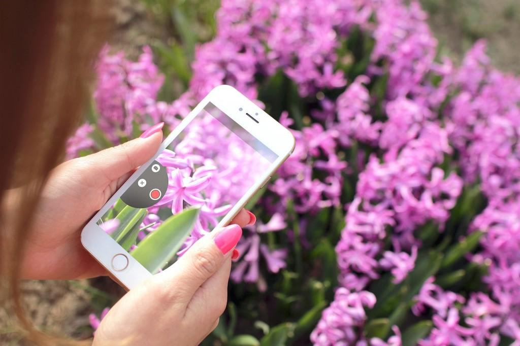 image credit jeshoots via pexels.com
