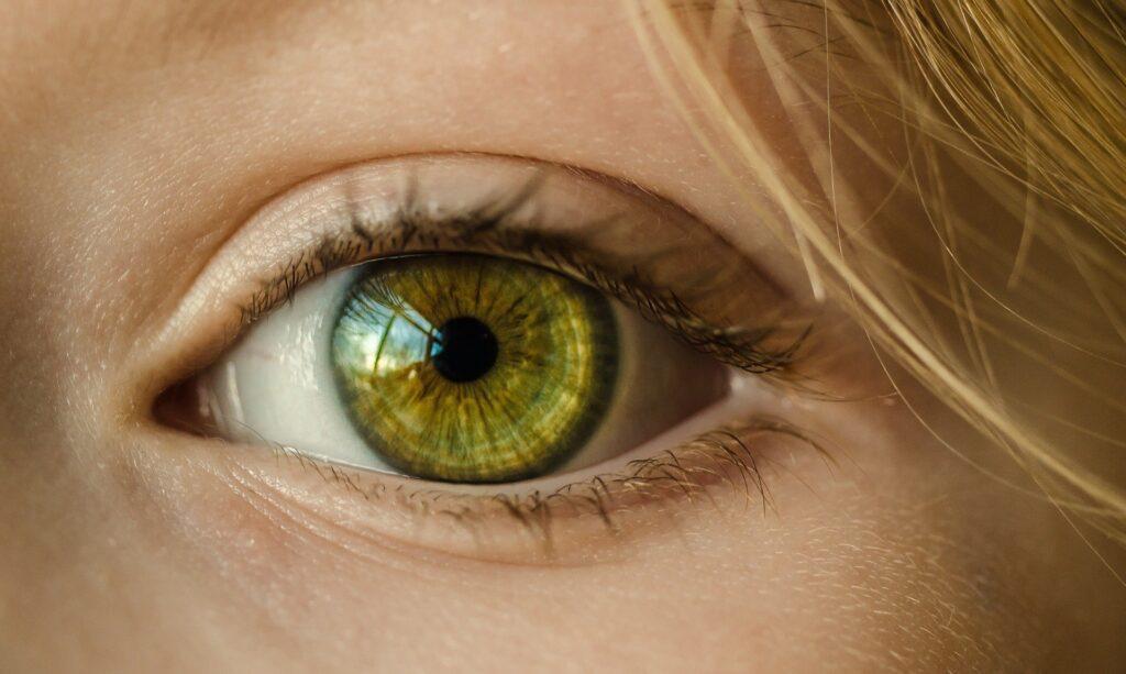 How vision happens