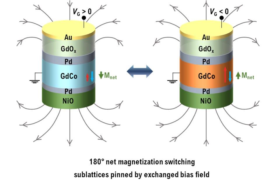 180-Degree-Switching-of-Net-Magnetization